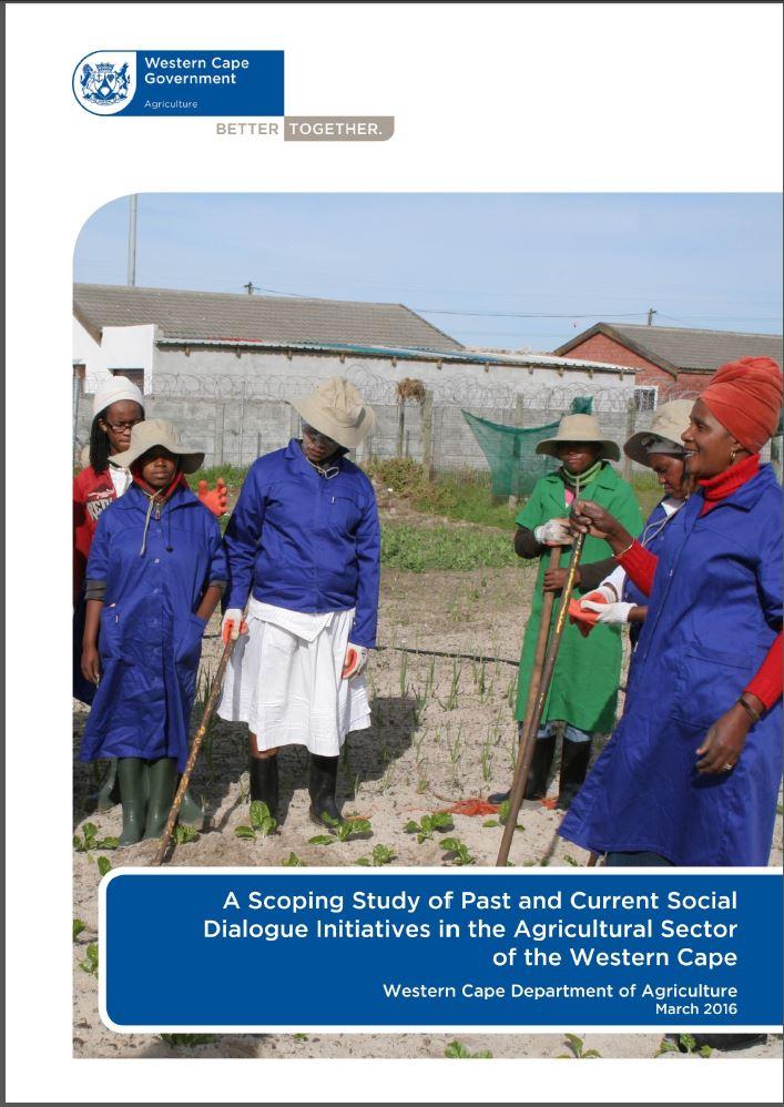 SDI Scoping study